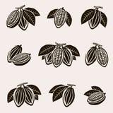 Установленные фасоли какао вектор бесплатная иллюстрация