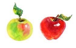 Установленные яблоки акварели иллюстрация вектора