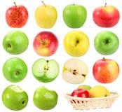 установленные яблоки Стоковые Фото