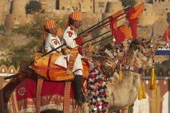 установленные lancers верблюда Стоковые Изображения RF