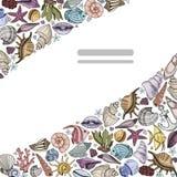 Установленные seashells вектора иллюстрация вектора