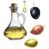 Установленная оливка акварели: оливковое масло, оливки и падение оливкового масла изолированные на белой предпосылке Иллюстрация  иллюстрация штока