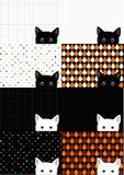Установленная предпосылка белого и черного кота бесплатная иллюстрация