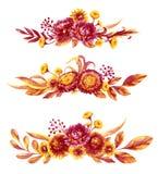 Установленные букеты цветков осени иллюстрация штока