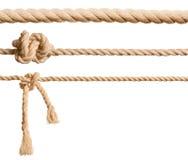 Установленные веревочки изолированными стоковая фотография