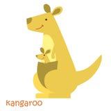 Установленные животные - кенгуру Стоковое фото RF