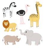 Установленные животные сафари Стоковое Изображение RF