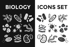 Установленные значки вектора вируса бактерий черно-белые Стоковое Изображение