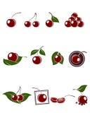 Установленные значки вишни Стоковые Фото