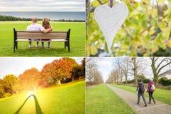 Установленные изображения влюбленности Стоковое фото RF