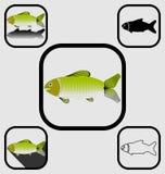 установленные иконы рыб Стоковое Изображение RF