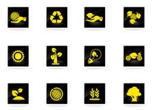 установленные иконы экологичности Стоковая Фотография RF