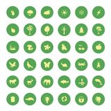 установленные иконы eco зеленые Стоковая Фотография RF