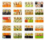 Установленные морепродукты - изолированные крены на белой предпосылке Стоковые Изображения