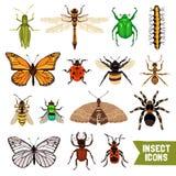 установленные насекомые икон Стоковые Изображения