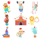 Установленные объекты и характеры цирка родственные Стоковое Фото