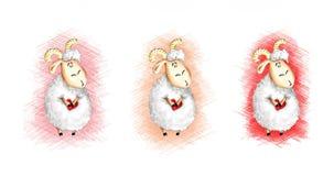 Установленные овечки Стоковые Фото