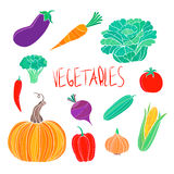 Установленные овощи натуральных продуктов вектора красочные Стоковое Изображение RF