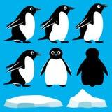 установленные пингвины