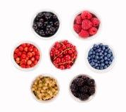 Установленные различные ягоды Клубника, смородина, поленики, голубика и ежевика Стоковые Фотографии RF