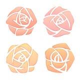 установленные розы иллюстрация вектора