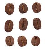Установленные фасоли Coffe Стоковые Фотографии RF