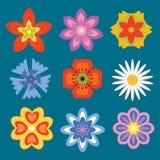 установленные цветки Стоковые Изображения RF