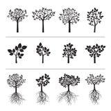 Установленные черные деревья и корни также вектор иллюстрации притяжки corel Стоковая Фотография RF