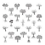 Установленные черные деревья с листьями также вектор иллюстрации притяжки corel Стоковая Фотография