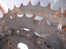 установленные шестерни крупного плана chainrings велосипеда Стоковая Фотография RF