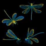 Установленные dragonflies нарисованные рукой Стоковое Фото