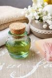 Установленный курорт: бутылка эфирного масла, мягких полотенец, бара естественного, h Стоковые Фото