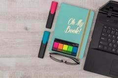 Установленный офис: дневник, тетрадь и стекла Стоковые Изображения RF