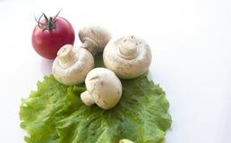 Установленный свежий овощ с зелеными лист Стоковое Изображение