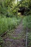 Устарелый железнодорожный путь на лесе Стоковая Фотография RF