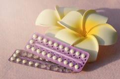 Устный контрацептив с frangipani цветет на розовой ткани фриза Стоковое Изображение RF