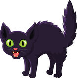 Устрашенный кот шаржа черный Стоковое фото RF