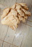 устрица гриба Стоковые Изображения RF