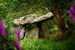 Усыпальница Gaulstown портальная в Ирландии Стоковые Изображения