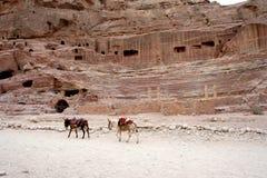 Усыпальницы высекли в красный песчаник в Petra, Джордан Стоковая Фотография RF