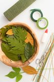 Утвари для делать листья бумажного цветка Стоковое Фото