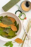 Утвари для делать листья бумажного цветка Стоковая Фотография RF