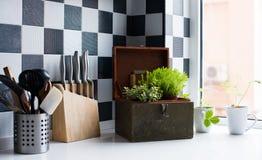 утвари поддержки кухни формы утки славные Стоковые Фотографии RF