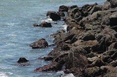 Утесистая береговая линия Стоковые Фотографии RF