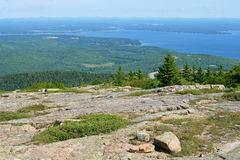 утесистая верхняя часть Национальный парк Acadia Стоковые Фотографии RF