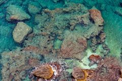 Утесистая предпосылка моря Стоковые Фото