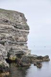 Утесистый берег на крымском побережье Стоковое Фото
