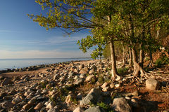 утесистый берег Стоковые Фото