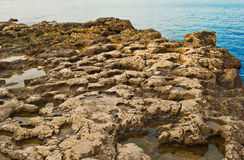 утесистый seacoast Стоковые Изображения RF