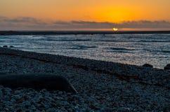 утесистый seascape Состав природы Стоковое Фото